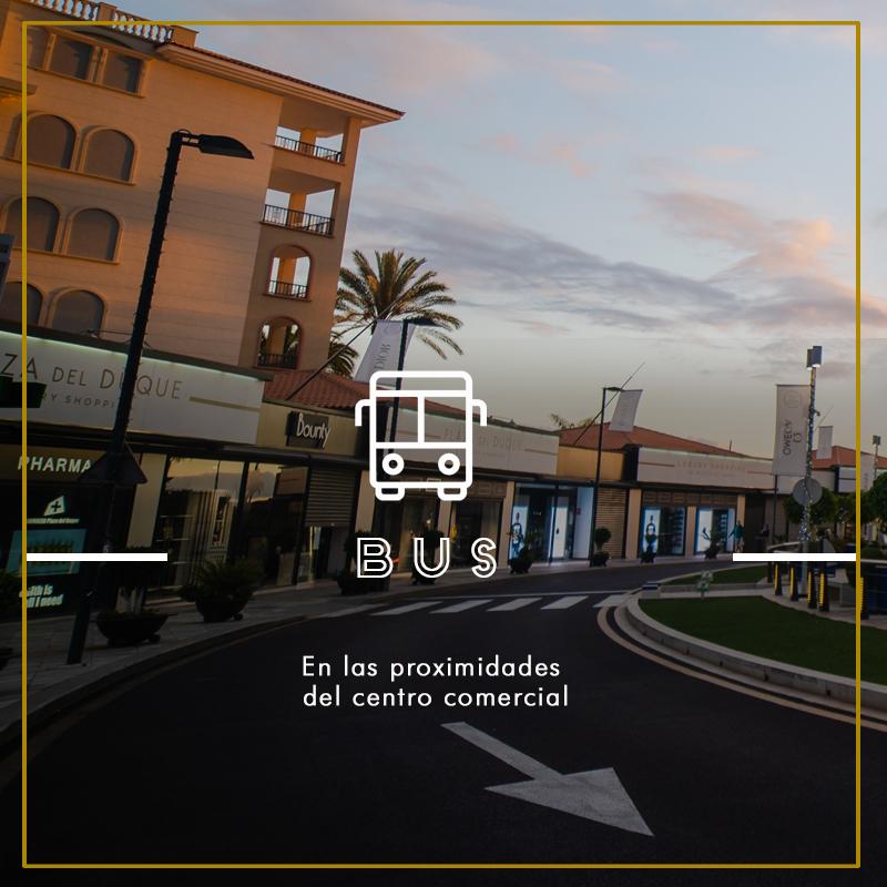 Bus_Plaza del Duque_esp